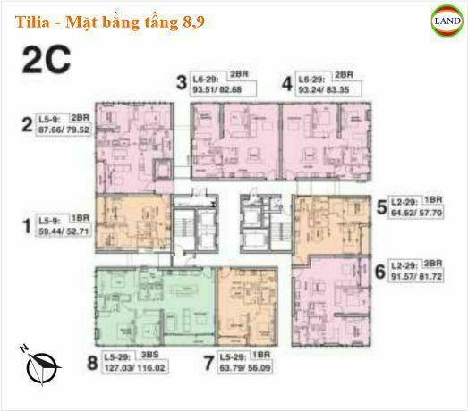 Mặt bằng tháp 2C tầng 8,9 Tilia Residence - MU7 Empire city